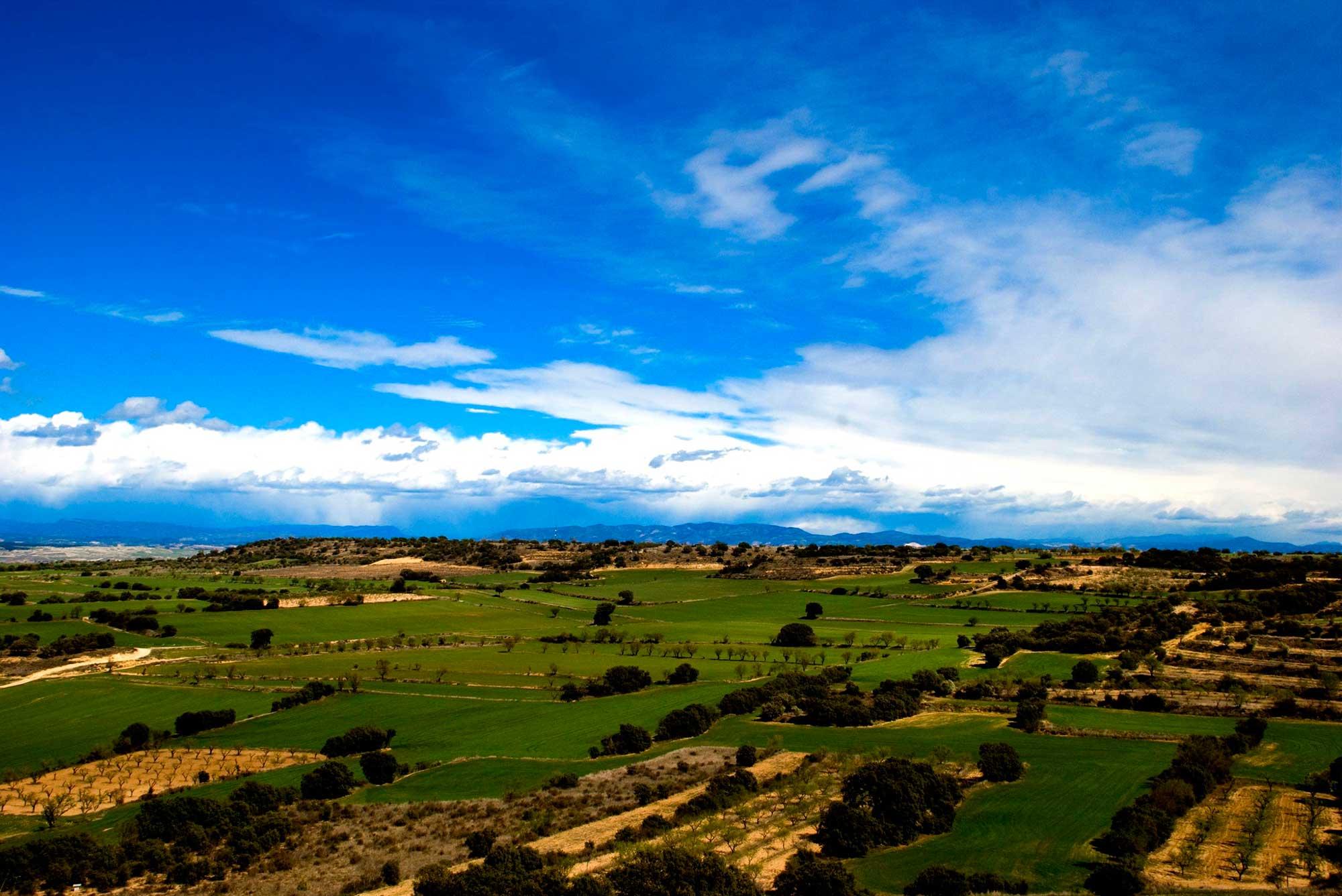 Somontano_de_Barbastro,_Lagunarrota_(Huesca,_Aragón)CONGRESOSBARBASTRO